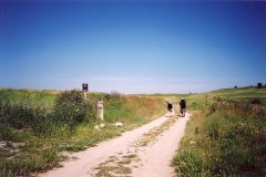 Pilgrims on the Camino de Santiago (click to enlarge)