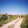 Pilgrims on the Camino de Santiago